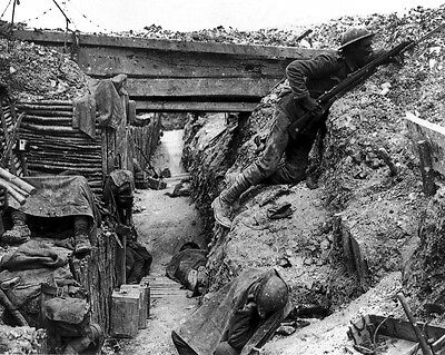 New 8x10 World War I Photo: Entrenched British Troops, Battle of the Somme