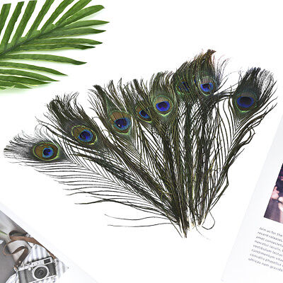 10Pcs 25cm Natural Peacock Tail Feathers Costume Party Wedding DIY Fashion Craft