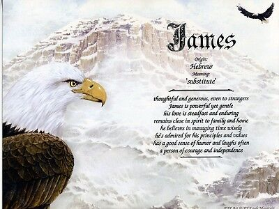 """Eagle Mountain"" Name Meaning Print Personalized (Birds Patriotic Inspirational)"