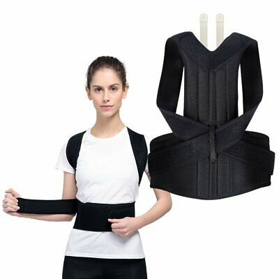 Waist Trainer Sport Lumbar Support Lower Back Brace Belt Body Training Shaper AU
