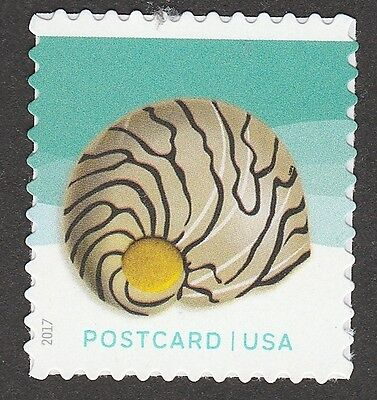 US 5166 Seashells Zebra Nerite Postcard single (1 stamp) MNH 2017