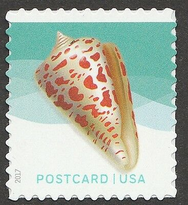 US 5165 Seashells Alphabet Cone Postcard single (1 stamp) MNH 2017