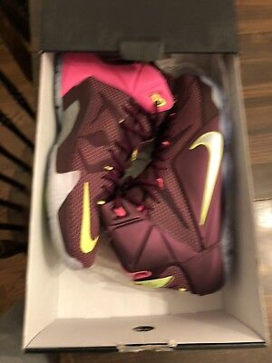 info for 7dd2d f92dd ... where can i buy nike lebron james xii 12 merlot double helix purple  volt mens size