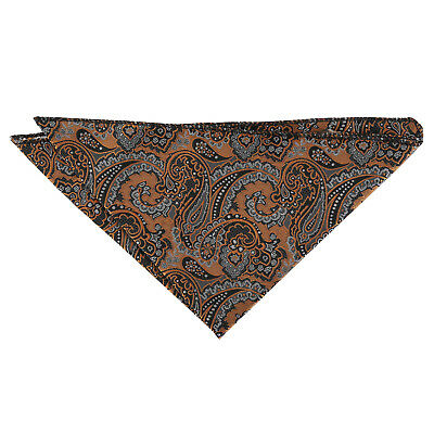 DQT Woven Floral Royal Paisley Gold & Silver Formal Handkerchief Hanky