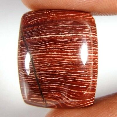 Wow! 32.35Cts Natural Red Snake Skin Jasper Cab Cushion Loose Gemstone 21x17x8mm