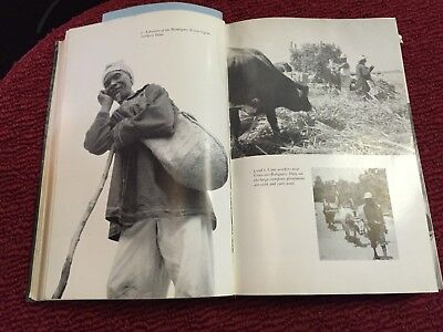 The Drum and the Hoe      Life & Lore of Haitian People  First Edition