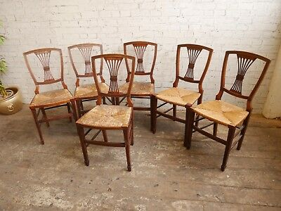6 Antique Rustic Country House  Cottage Salon Dining Chairs with Rush Seats