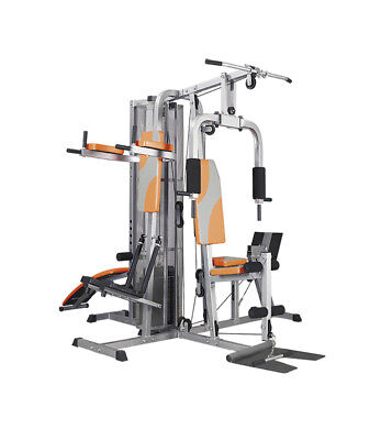 We R Sports Multi Station Home Gym Ab Bench Lat Pull Back Biceps Pull Up Station