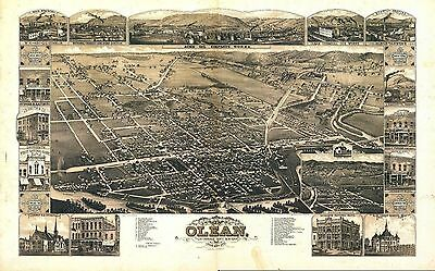 ny133 Antique old map NEW YORK NY genealogy  history OLEAN BOARDMANVILLE c1882
