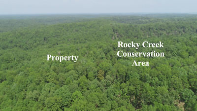 3 acres in Ozarks BORDERING 20,000 acres public land!  - Bid On Down Payment!