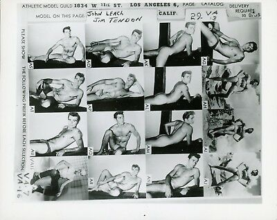 Vintage Athletic Model Guild Male Nude Leach/Tendon Catalog 4x5 Photo Gay 16123