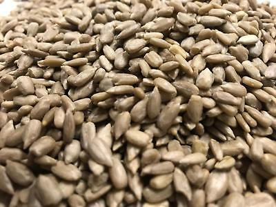 5kg Sunflower Hearts WITH 1kg Dried Mealworms Wild Bird Variety Pack by Maltbys