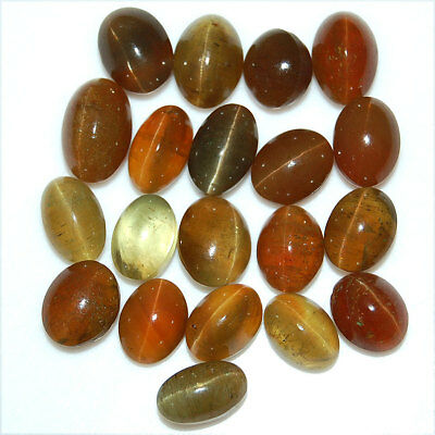 20 Pcs Natural Apatite Cat's Eye Top Quality Untreated Cabochon Gems 10mm-13mm