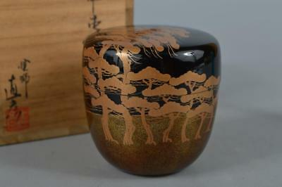 R3609: Japanese XF Wooden Lacquer ware TEA CADDY Natsume Container, NaoHiko made