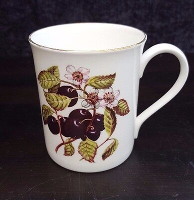 Royal Sutherland Mug with pretty berry, cherry design