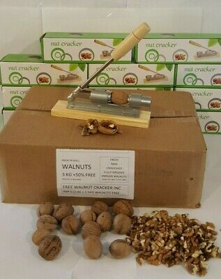 4.5 kg WALNUTS IN SHELL SMALL 3 KG+ 1.5 KG  FREE +FREE WALNUT CRACKER RRP £12.99