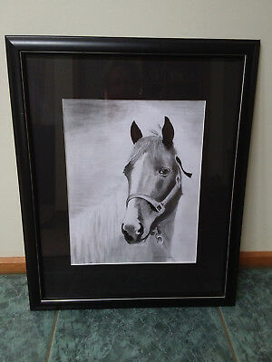 Horse Pencil Drawing Framed Painting
