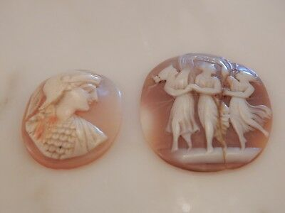 A Good Collectable Lot Of Two Oval Unmounted Carved Cameos