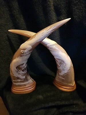 Vintage Chinese Carved Ox Water Buffalo Horns  with Dragons