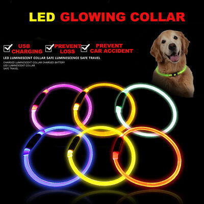 LED Pet Dog Collar USB Rechargeable Flashing Lights Waterproof Night Safety Belt