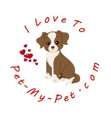 Luxury Pet Product Online Business With Ready Made WebsiteFor Sale