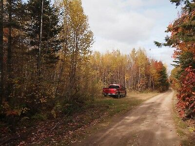 8.38 Acre Recreational Property for Sale in New Brunswick Canada