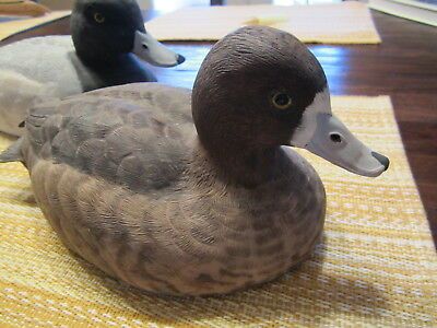 Lesser Scaup Pair Hand Carved Ducks
