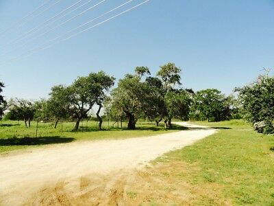 Commercial 2.9 acres with 2,000 sq foot manufactured home on Hwy 183 in TX