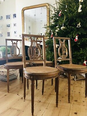4 Antique French Louis XVI Cane Dining Chairs - Immaculate Condition