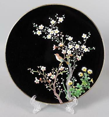 Small Signed Antique Early 20thC Japanese Cloisonne Bird & Flowers Enamel Plate