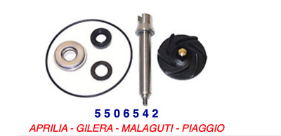 5506542 Kit Revisione Pompa Acqua Ø30 MALAGUTI SPIDERMAX 500 RS < 2008
