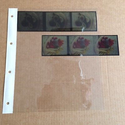 Clear Acetate Negative Storage Filing Pages For 120 Film.  Qty 25