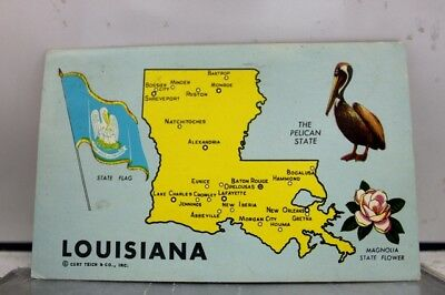 Louisiana LA Map State Flag Pelican Magnolia Flower Postcard Old Vintage Card PC