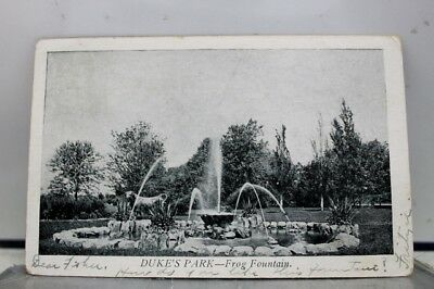 Scenic Duke's Park Frog Fountain Postcard Old Vintage Card View Standard Post PC