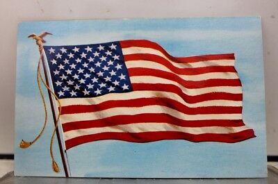 Scenic United States Flag Postcard Old Vintage Card View Standard Souvenir Post