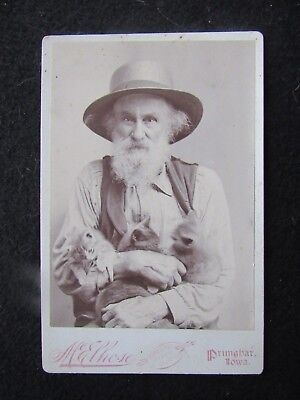 c1890s Cabinet Card Photograph Old Miner with Two Kittens & Cat Primghar Iowa