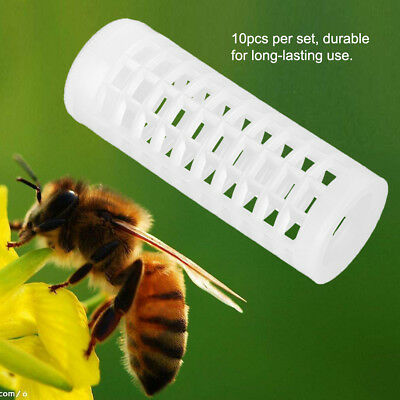 10Pcs Plastic Beekeeping Rearing Cup Queen Bee Lay Cages Beekeepers Protecter