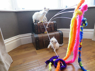 Carnival, Wiggle Stick Toy/Teaser/Chaser/Wand. Cats, Ferrets  Love Them!