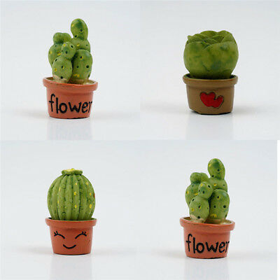 Miniatures Gardening Flowers Cactus Potted Plant Furniture Sets For Doll House