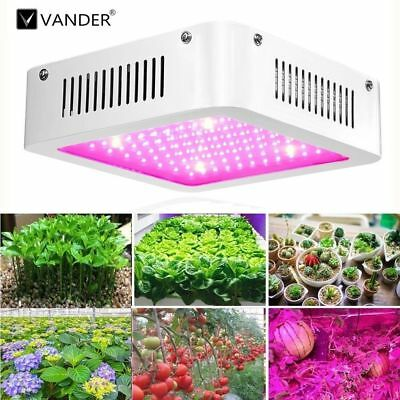 Hydroponics  Full Spectrum 1000W LED Plant Grow Light for Medical plants Bloom