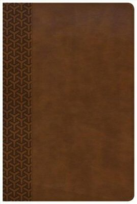 CSB Everyday Study Bible, British Tan Leathertouch 9781462796946