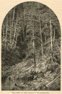 View on the Susquehanna PA: 1874 Woodcut Book Plate View by Granville Perkins