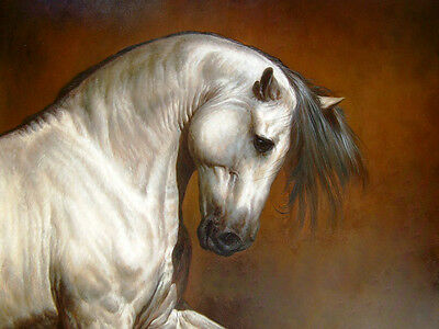 CHENPAT05 100% hand-painted modern horse animals oil painting wall art on canvas