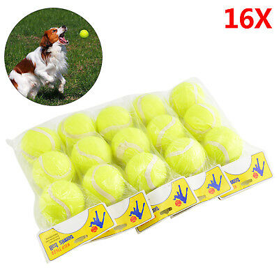 16x  Tennis Balls Bright Green For Pets Puppy Play Dog Toys Bouncing Ball New