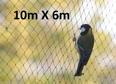 10m x 6m Wide Bird Netting Strong Garden Pond Fruit Anti Net Protection Veg Cage