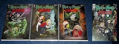 RICK AND MORTY DUNGEONS AND DRAGONS #1 2 3 4 (of 4) D&D A set IDW COMIC NM 1st P