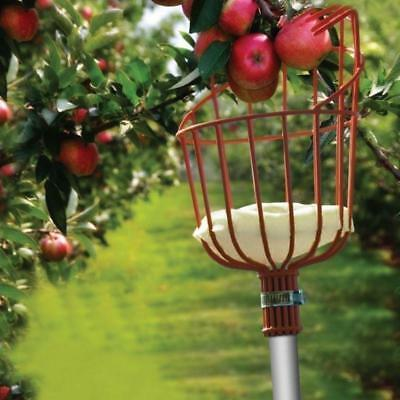 Light Fruit Tree Picker with telescoping Pole and Twist-on Basket, Red Head Tool