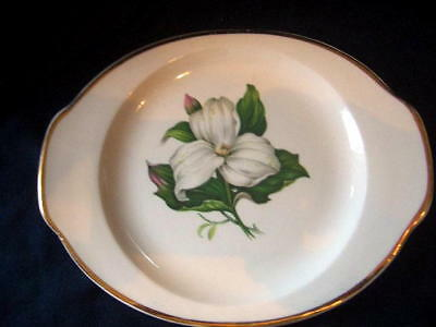 """American Limoges tab handle 8¼"""" plate white TRILLIUM gold unmarked underplate???"""