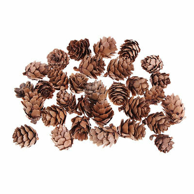 80 Real Natural Small Hemlock Pine Cones Bulk Decoration Crafts Christmas Decor