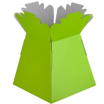 Lime Green - Living Vases Florist Bouquet Box Flower Plant Aqua Sweet Gift Boxes